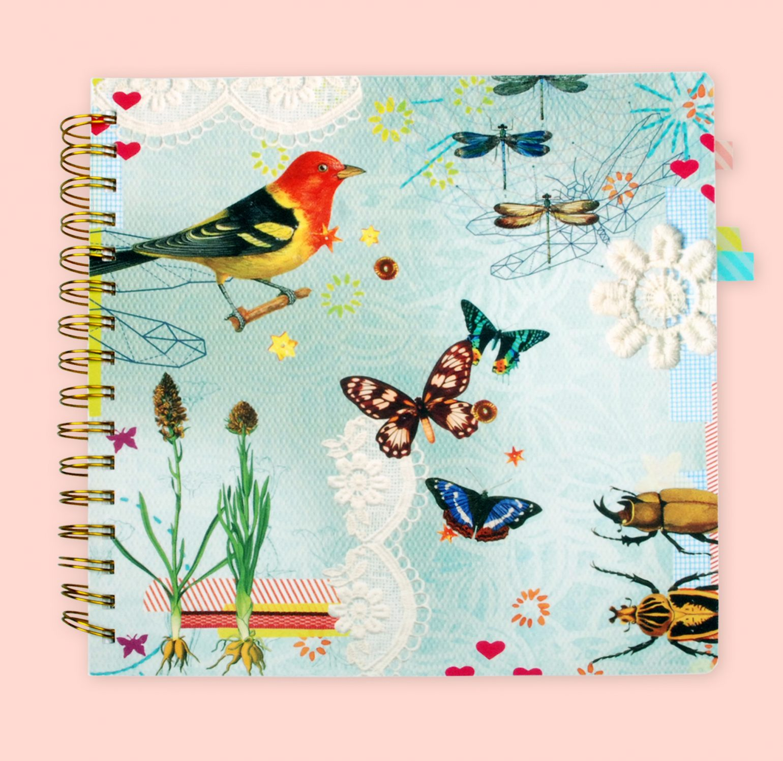 birdsbook