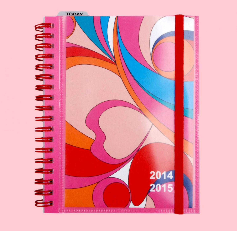 diary2a